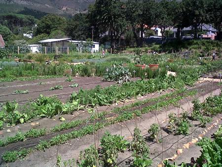 Cape Town-20140212-00643